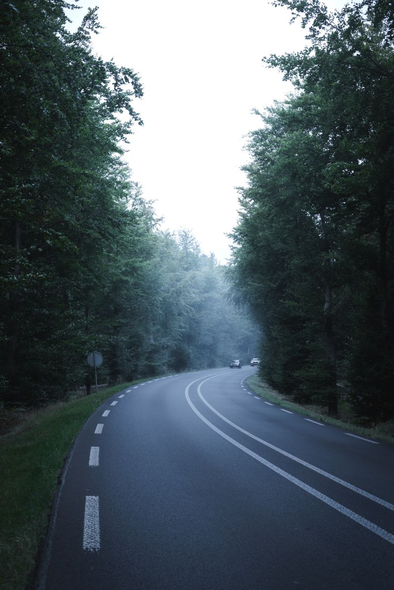 Errores que debes evitar al manejar en curvas para no estropear tu auto