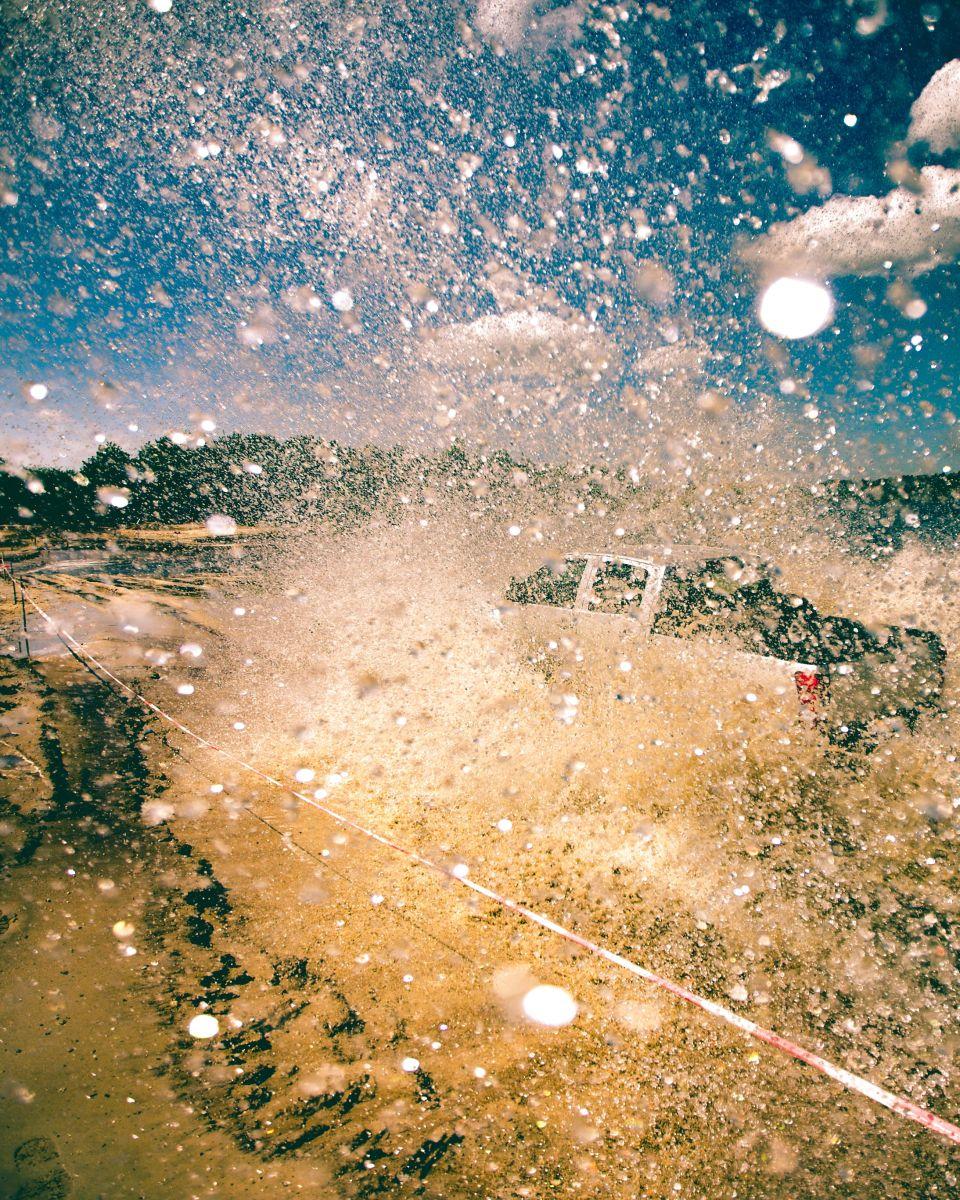 Cómo remover el excremento de pájaros en tu auto